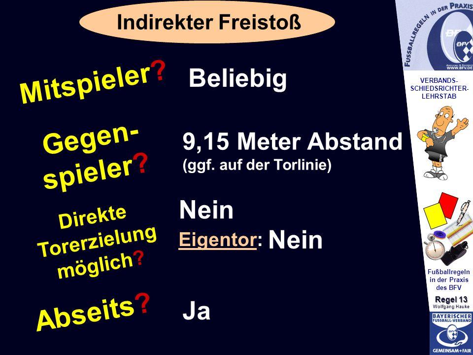 VERBANDS- SCHIEDSRICHTER- LEHRSTAB Fußballregeln in der Praxis des BFV Regel 13 Wolfgang Hauke Indirekter Freistoß Mitspieler.