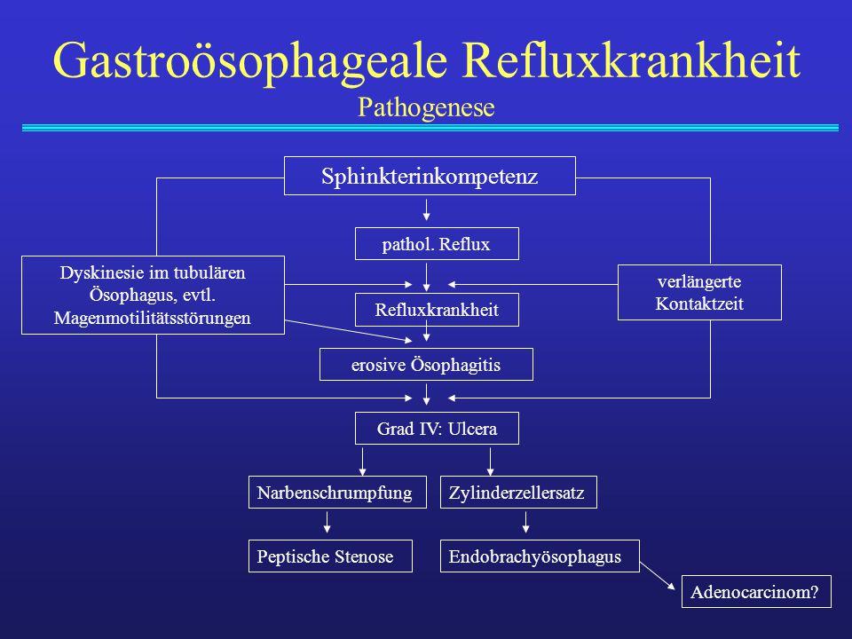 Gastroösophageale Refluxkrankheit Pathogenese Sphinkterinkompetenz Dyskinesie im tubulären Ösophagus, evtl. Magenmotilitätsstörungen Zylinderzellersat