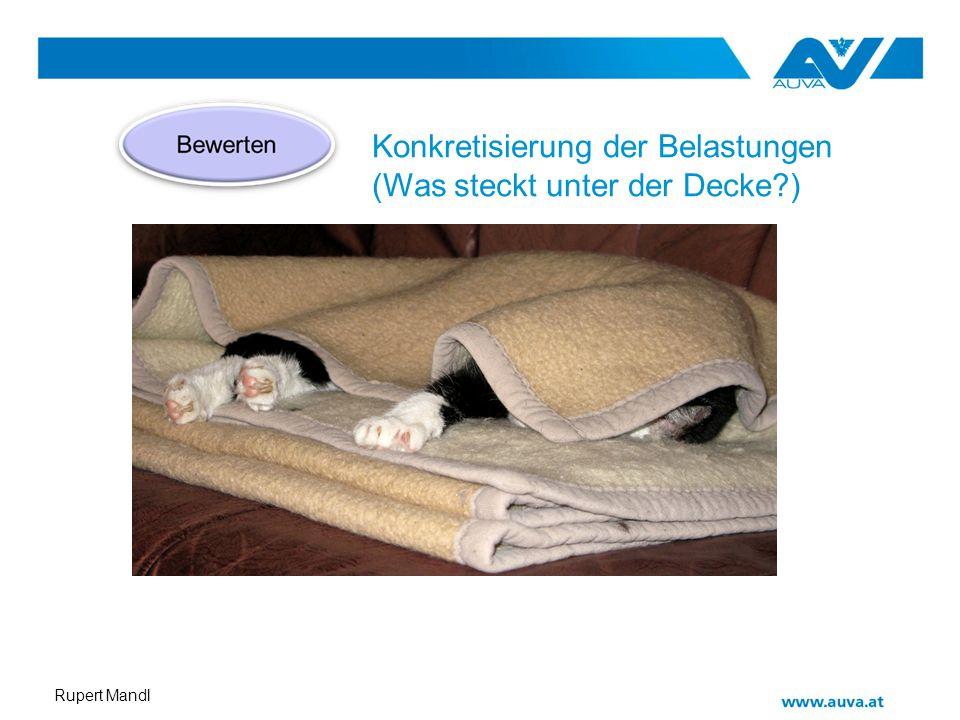Rupert Mandl Konkretisierung der Belastungen (Was steckt unter der Decke?)