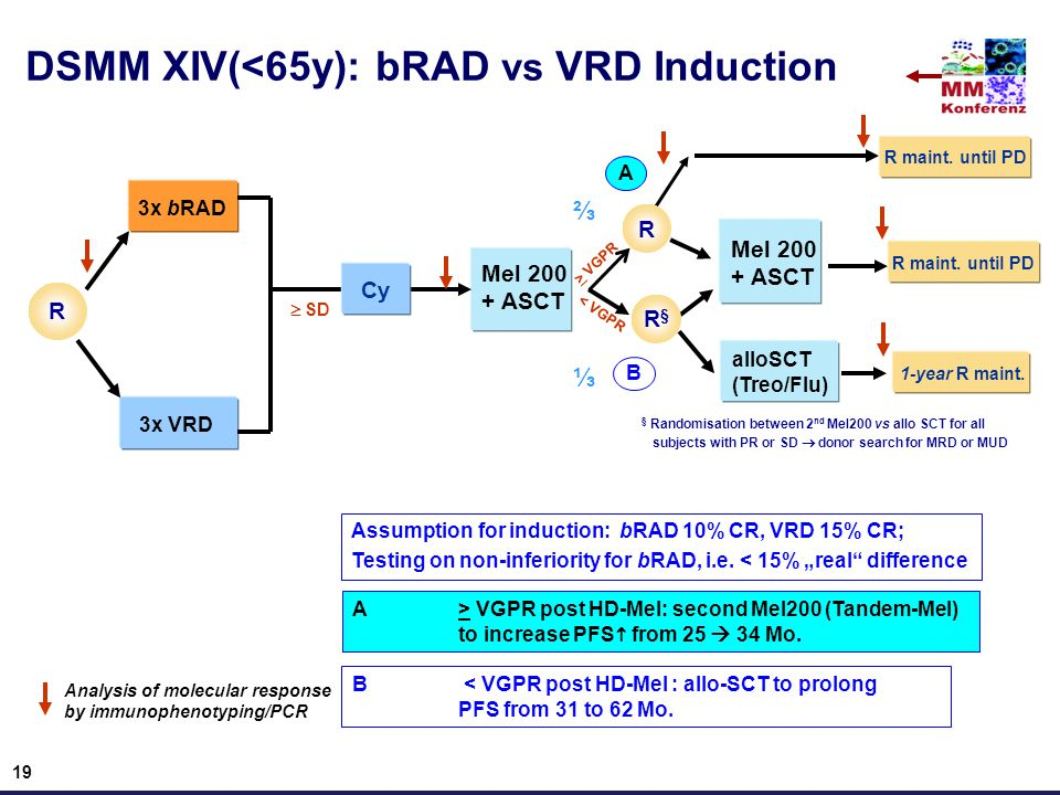DSMM XIV(<65y): bRAD vs VRD Induction R 3x bRAD 3x VRD Mel 200 + ASCT  SD > VGPR alloSCT (Treo/Flu) Analysis of molecular response by immunophenotyping/PCR < VGPR A B § Randomisation between 2 nd Mel200 vs allo SCT for all subjects with PR or SD  donor search for MRD or MUD A > VGPR post HD-Mel: second Mel200 (Tandem-Mel) to increase PFS  from 25  34 Mo.