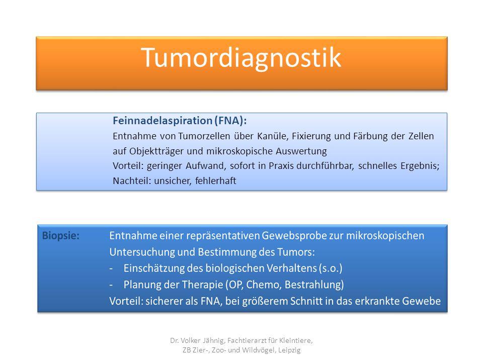 Feinnadelaspiration (FNA): Entnahme von Tumorzellen über Kanüle, Fixierung und Färbung der Zellen auf Objektträger und mikroskopische Auswertung Vorte