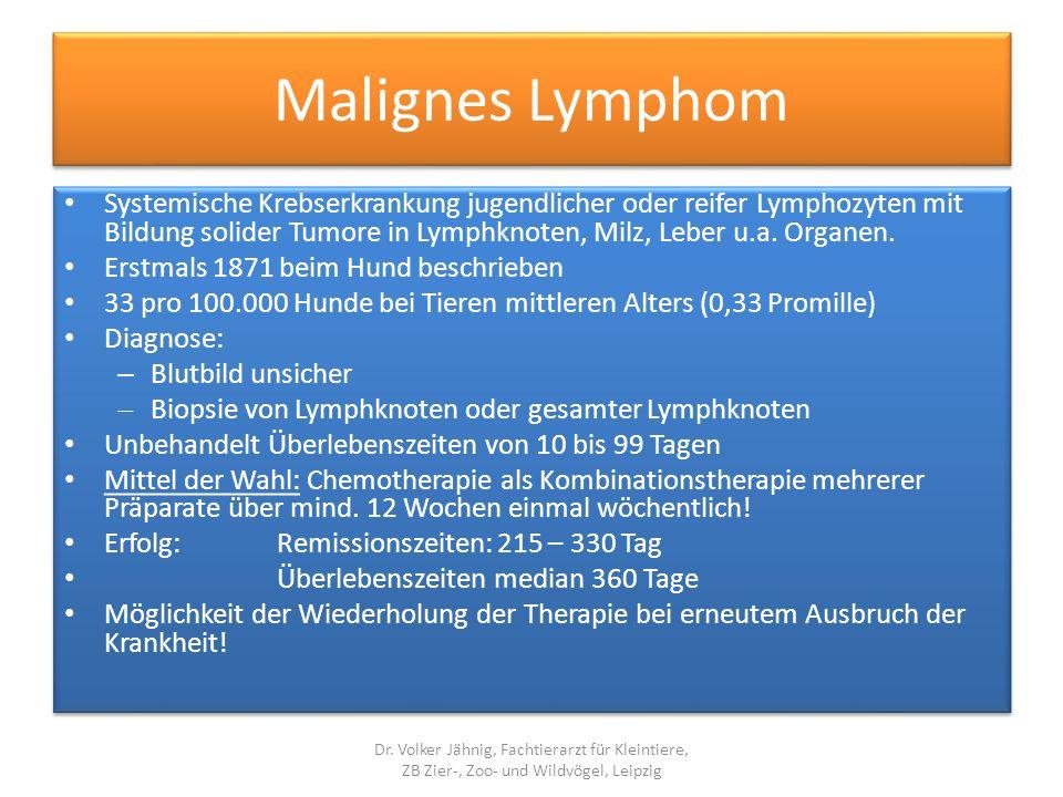 Malignes Lymphom Systemische Krebserkrankung jugendlicher oder reifer Lymphozyten mit Bildung solider Tumore in Lymphknoten, Milz, Leber u.a. Organen.