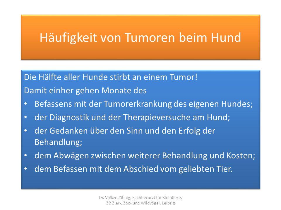 Häufigkeit von Tumoren beim Hund Die Hälfte aller Hunde stirbt an einem Tumor! Damit einher gehen Monate des Befassens mit der Tumorerkrankung des eig