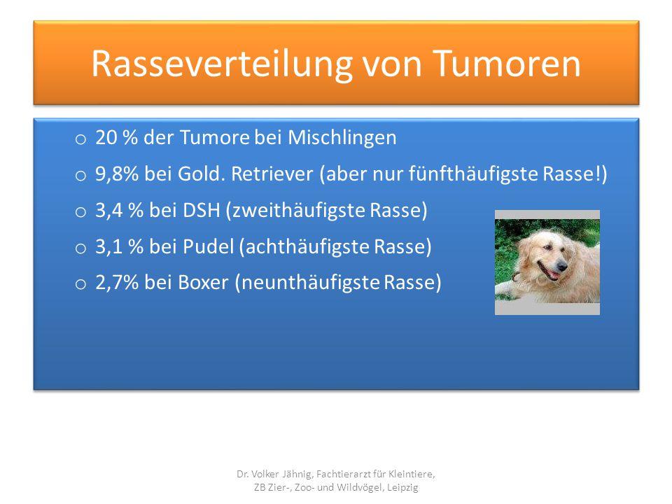 Rasseverteilung von Tumoren o 20 % der Tumore bei Mischlingen o 9,8% bei Gold. Retriever (aber nur fünfthäufigste Rasse!) o 3,4 % bei DSH (zweithäufig