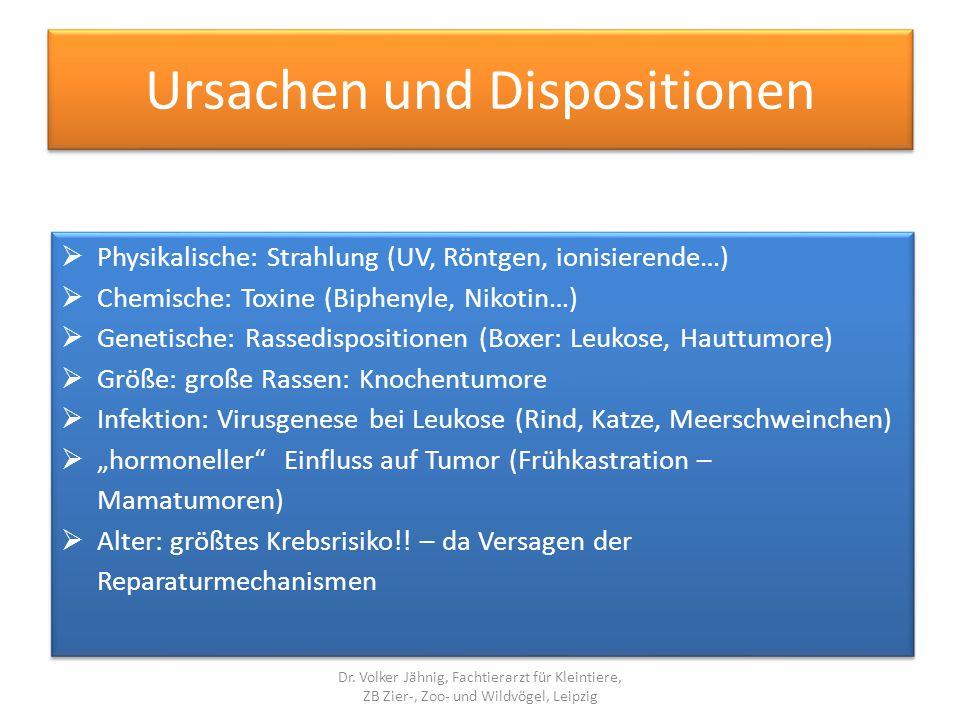 Ursachen und Dispositionen  Physikalische: Strahlung (UV, Röntgen, ionisierende…)  Chemische: Toxine (Biphenyle, Nikotin…)  Genetische: Rassedispos