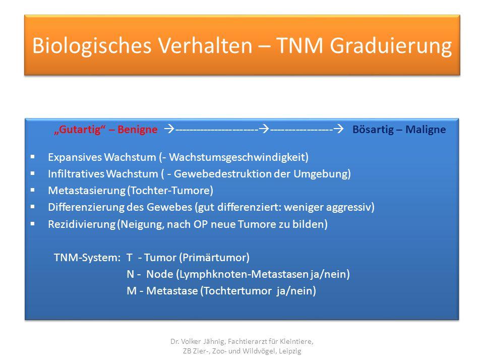 """Biologisches Verhalten – TNM Graduierung """"Gutartig"""" – Benigne  -----------------------  -----------------  Bösartig – Maligne  Expansives Wachstum"""