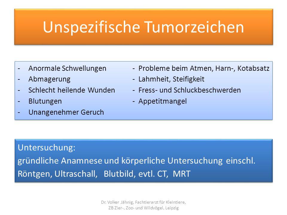 Unspezifische Tumorzeichen -Anormale Schwellungen- Probleme beim Atmen, Harn-, Kotabsatz -Abmagerung- Lahmheit, Steifigkeit -Schlecht heilende Wunden-