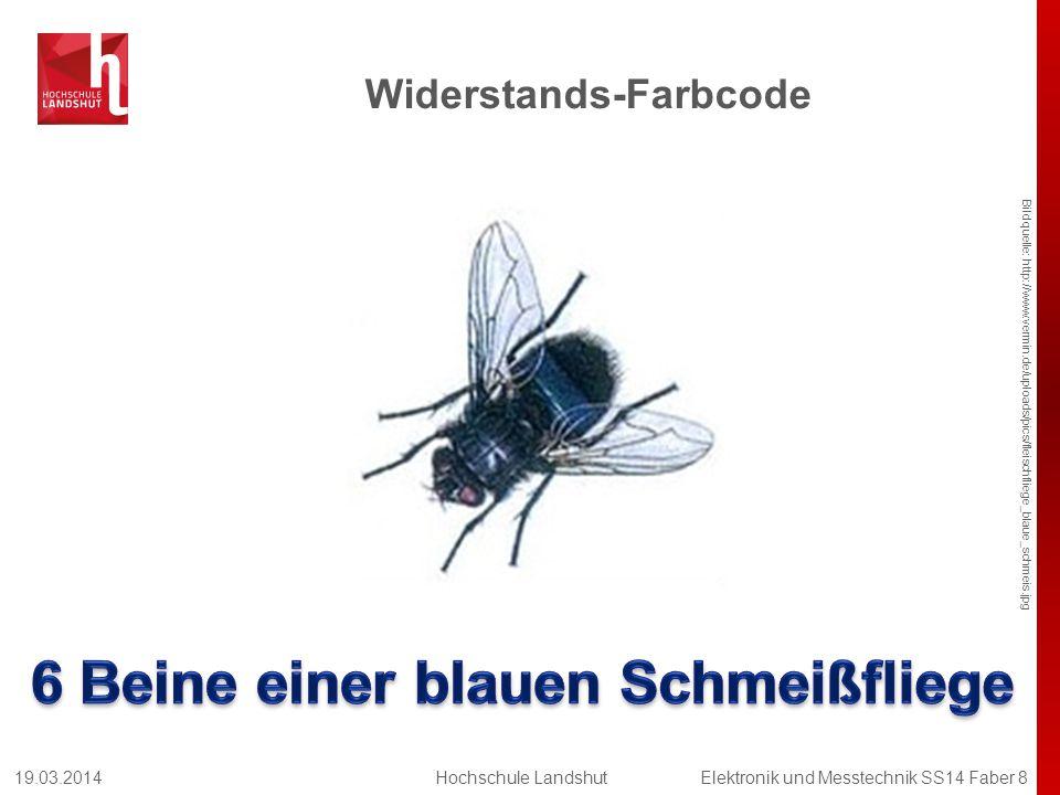 Widerstands-Farbcode Bildquelle: http://www.vermin.de/uploads/pics/fleischfliege_blaue_schmeis.jpg 19.03.2014Hochschule LandshutElektronik und Messtec