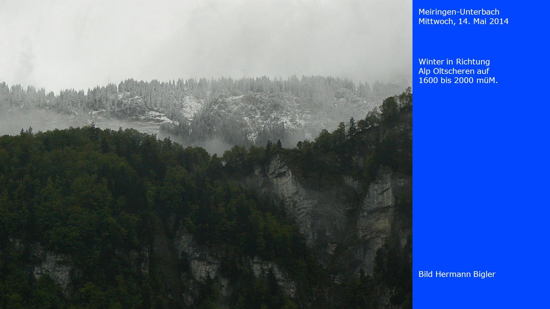 Meiringen-Unterbach Mittwoch, 14. Mai 2014 Bild Hermann Bigler Winter in Richtung Alp Oltscheren auf 1600 bis 2000 müM.