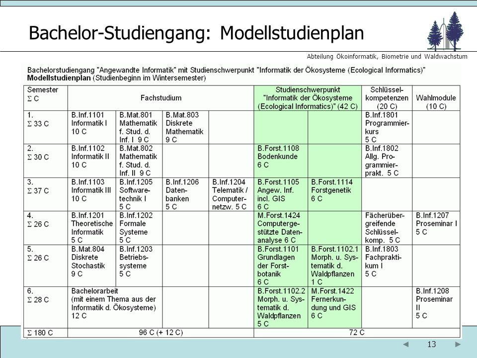 13 Abteilung Ökoinformatik, Biometrie und Waldwachstum Bachelor-Studiengang: Modellstudienplan