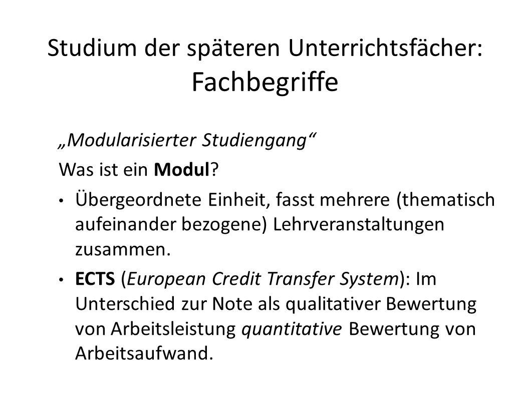 """Studium der späteren Unterrichtsfächer: Fachbegriffe """"Modularisierter Studiengang Was ist ein Modul."""