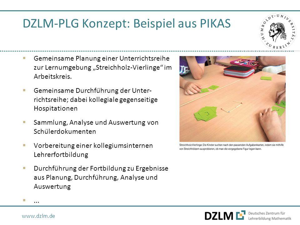 """www.dzlm.de DZLM-PLG Konzept: Beispiel aus PIKAS  Gemeinsame Planung einer Unterrichtsreihe zur Lernumgebung """"Streichholz-Vierlinge"""" im Arbeitskreis."""