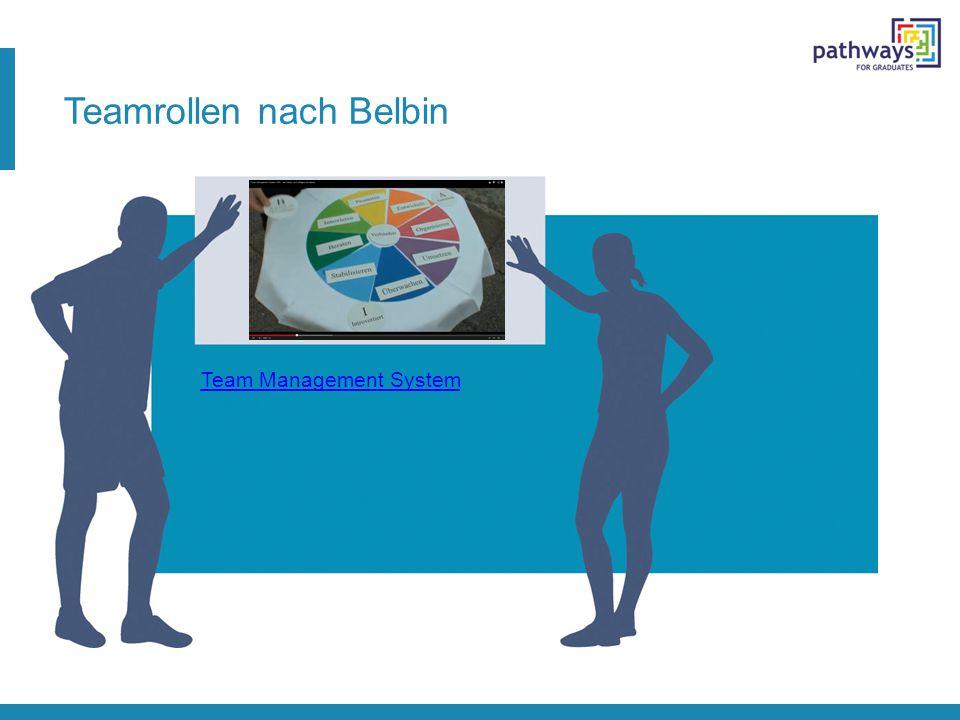 Teamrollen nach Belbin Team Management System