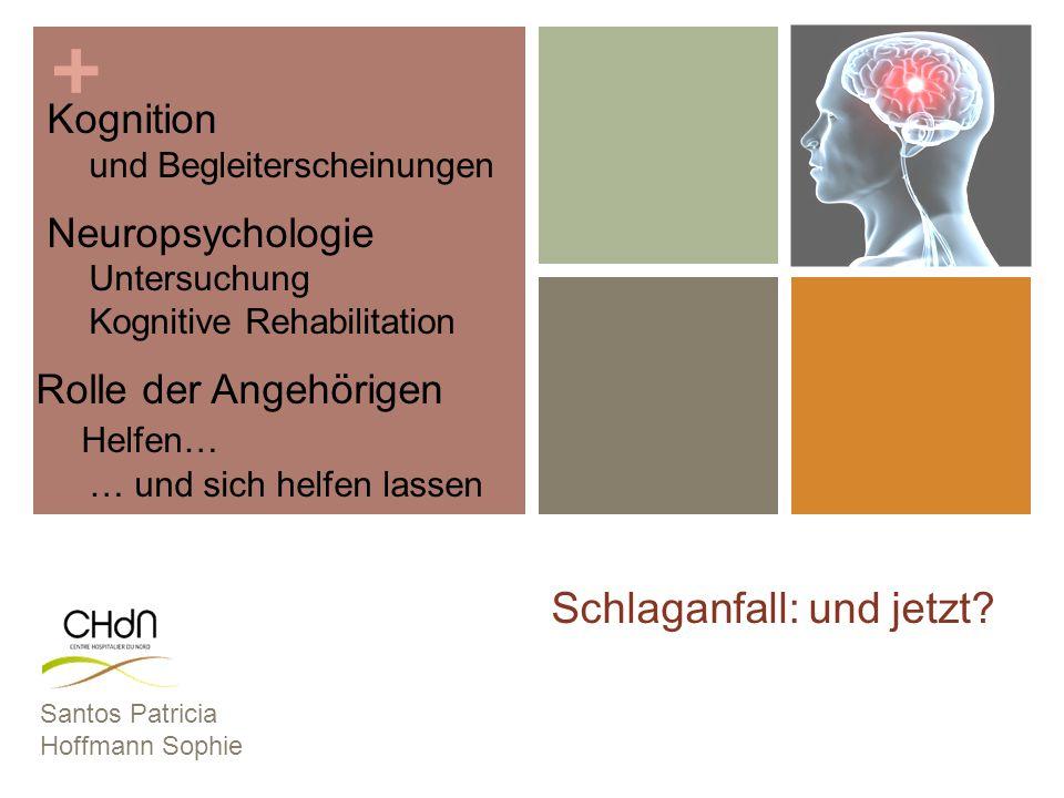 + Schlaganfall: und jetzt? Santos Patricia Hoffmann Sophie Kognition und Begleiterscheinungen Neuropsychologie Untersuchung Kognitive Rehabilitation R