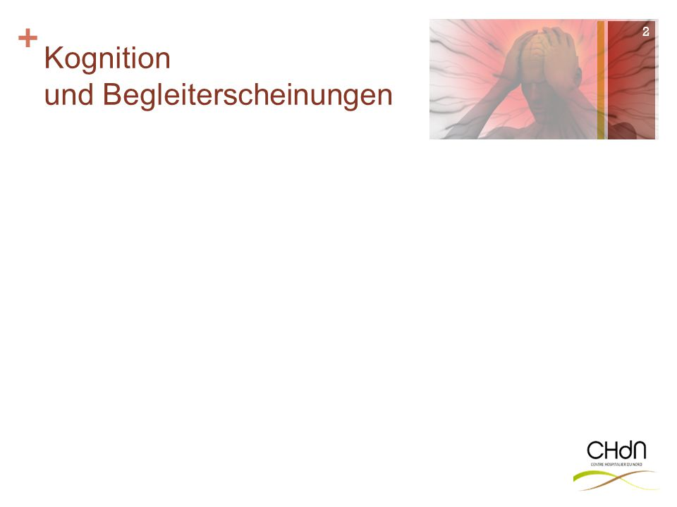 + Orientierung Sprache Gedächtnis Hemineglect Praxien 3 unsichtbar .