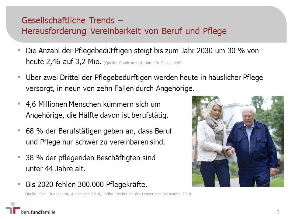 Gesellschaftliche Trends – Wer führt Pflege durch.