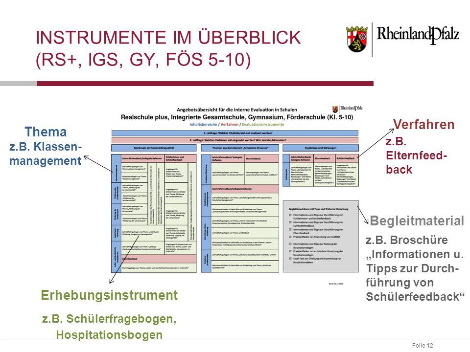 Folie 12 INSTRUMENTE IM ÜBERBLICK (RS+, IGS, GY, FÖS 5-10) Thema z.B. Klassen- management Erhebungsinstrument z.B. Schülerfragebogen, Hospitationsboge