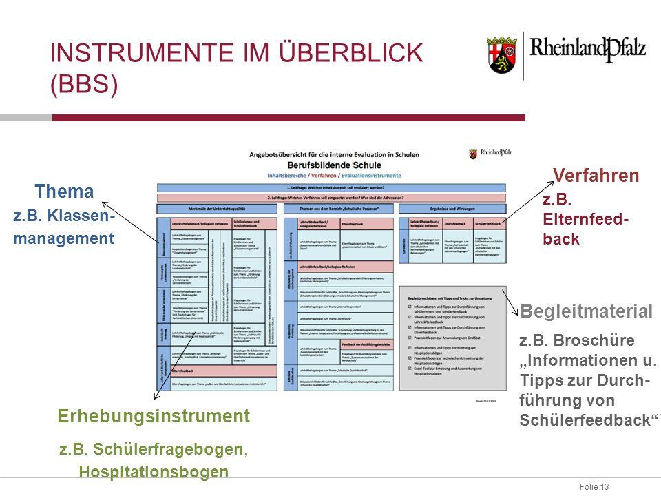 Folie 13 INSTRUMENTE IM ÜBERBLICK (BBS) Thema z.B. Klassen- management Erhebungsinstrument z.B. Schülerfragebogen, Hospitationsbogen Verfahren z.B. El