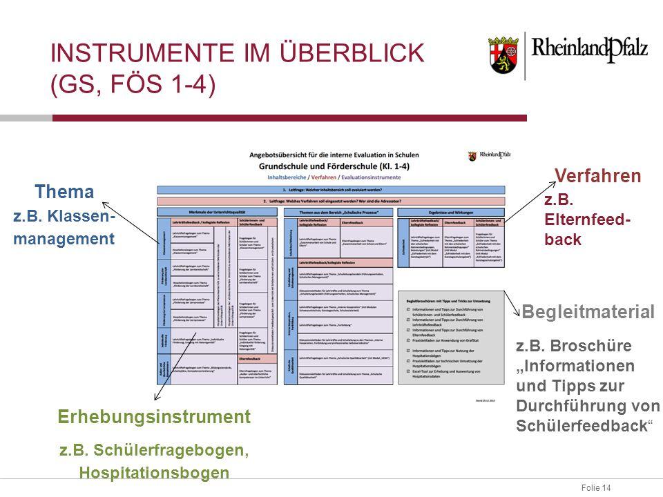 Folie 14 INSTRUMENTE IM ÜBERBLICK (GS, FÖS 1-4) Thema z.B. Klassen- management Erhebungsinstrument z.B. Schülerfragebogen, Hospitationsbogen Verfahren