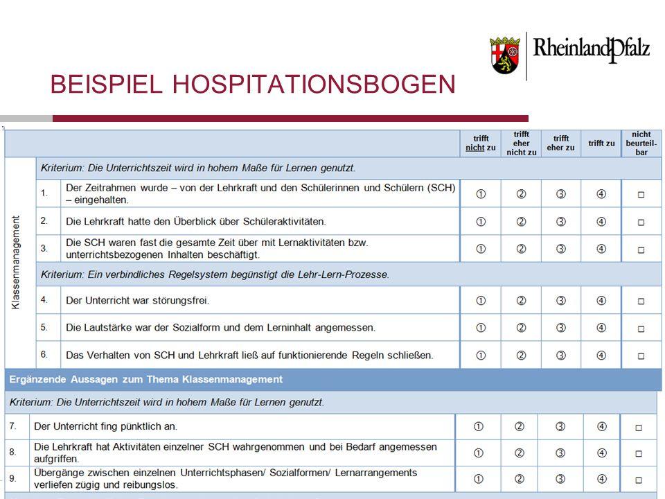 Folie 18 BEISPIEL HOSPITATIONSBOGEN