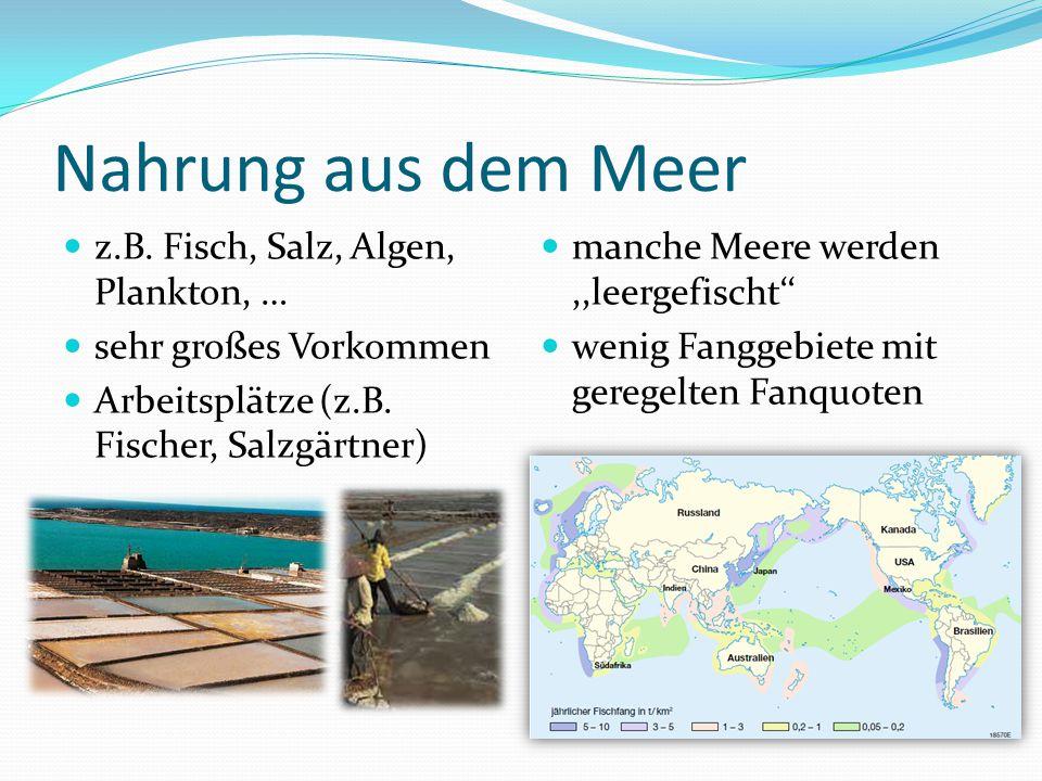 Nahrung aus dem Meer z.B. Fisch, Salz, Algen, Plankton, … sehr großes Vorkommen Arbeitsplätze (z.B. Fischer, Salzgärtner) manche Meere werden,,leergef
