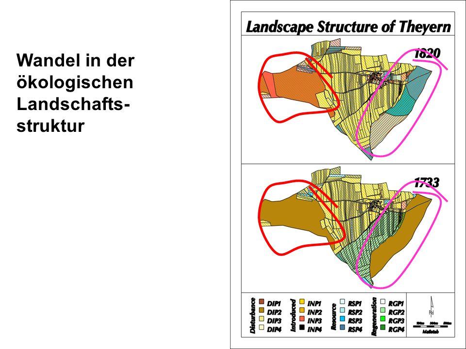 Wandel in der ökologischen Landschafts- struktur