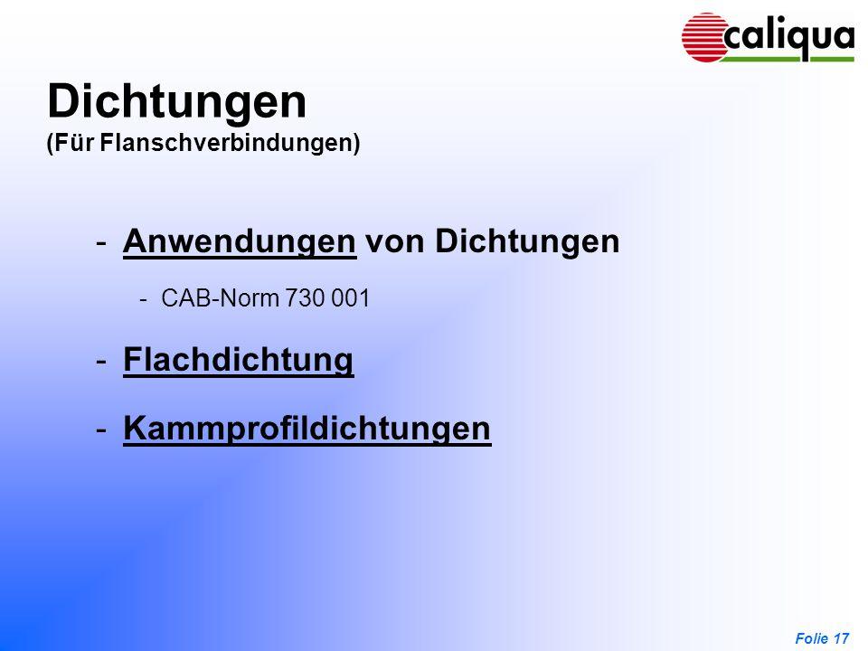 Folie 17 Dichtungen (Für Flanschverbindungen) -Anwendungen von DichtungenAnwendungen -CAB-Norm 730 001 -FlachdichtungFlachdichtung -Kammprofildichtung