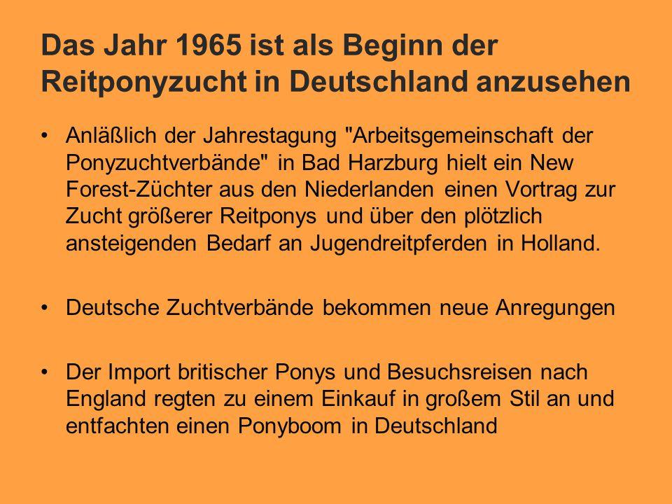 Das Jahr 1965 ist als Beginn der Reitponyzucht in Deutschland anzusehen Anläßlich der Jahrestagung Arbeitsgemeinschaft der Ponyzuchtverbände in Bad Harzburg hielt ein New Forest-Züchter aus den Niederlanden einen Vortrag zur Zucht größerer Reitponys und über den plötzlich ansteigenden Bedarf an Jugendreitpferden in Holland.