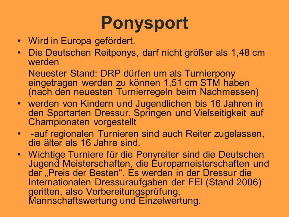 Ponysport Wird in Europa gefördert.