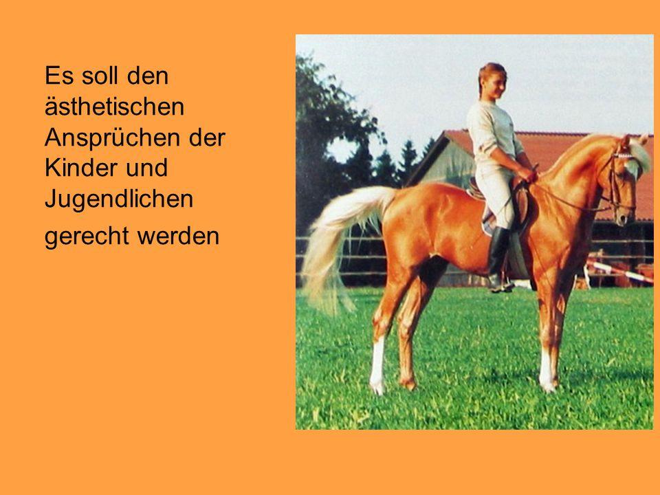 """Zuchtziele werden zur Rassenbeurteilung beschrieben """"Deutsches Reitpony: Hübscher Ponykopf, teilweise vom Vollblut oder Araber mitgeprägt."""