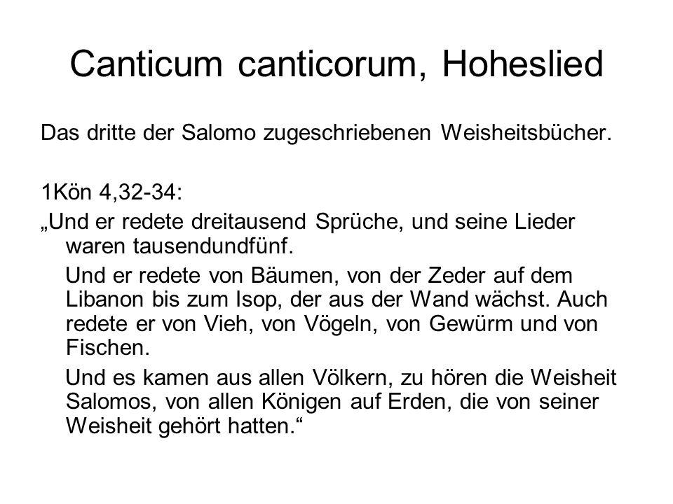 """Canticum canticorum, Hoheslied Das dritte der Salomo zugeschriebenen Weisheitsbücher. 1Kön 4,32-34: """"Und er redete dreitausend Sprüche, und seine Lied"""