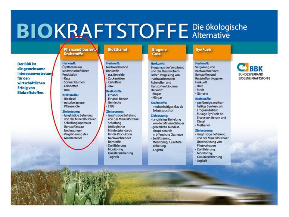 4 Mitgliederstruktur des BBK 1/3 Biomasse- Produktion ldw.