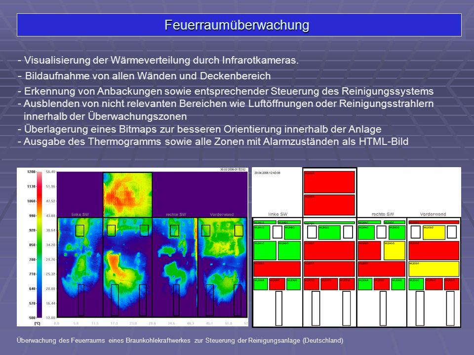 Feuerraumüberwachung - Visualisierung der Wärmeverteilung durch Infrarotkameras. Überwachung des Feuerraums eines Braunkohlekraftwerkes zur Steuerung