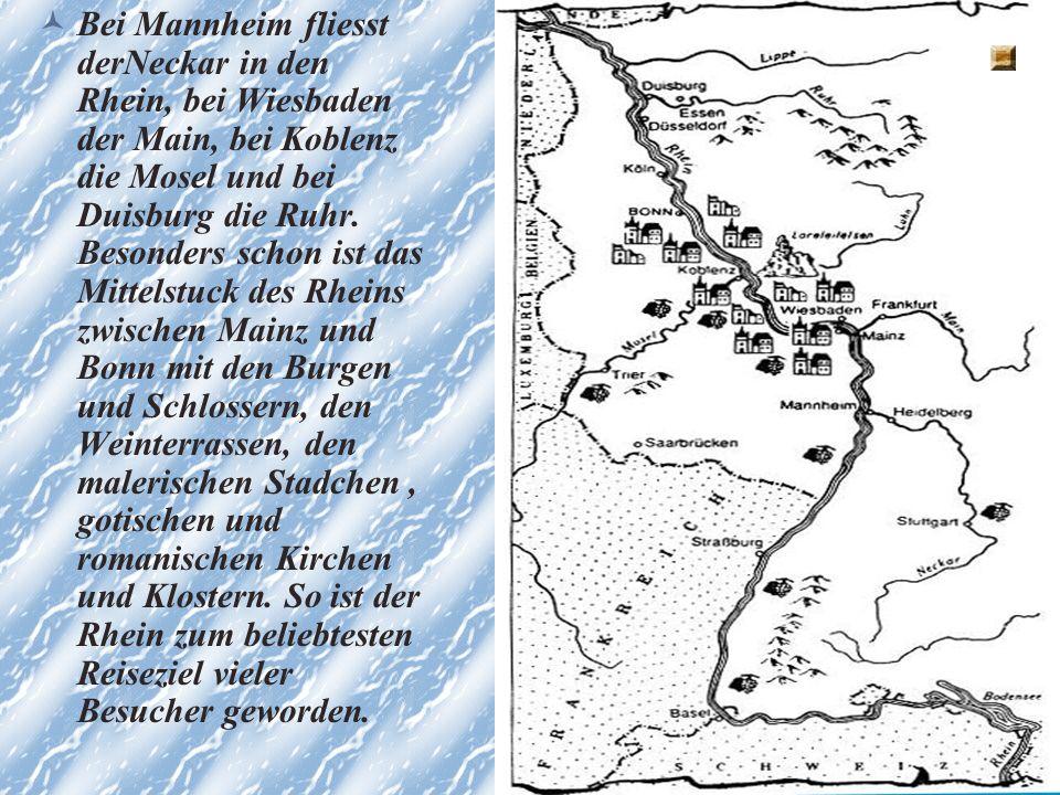 Der Rhein Der Rhein kommt aus der Schweiz.Er fliesst durch den Bodensee und dann von Basel nach Norden.