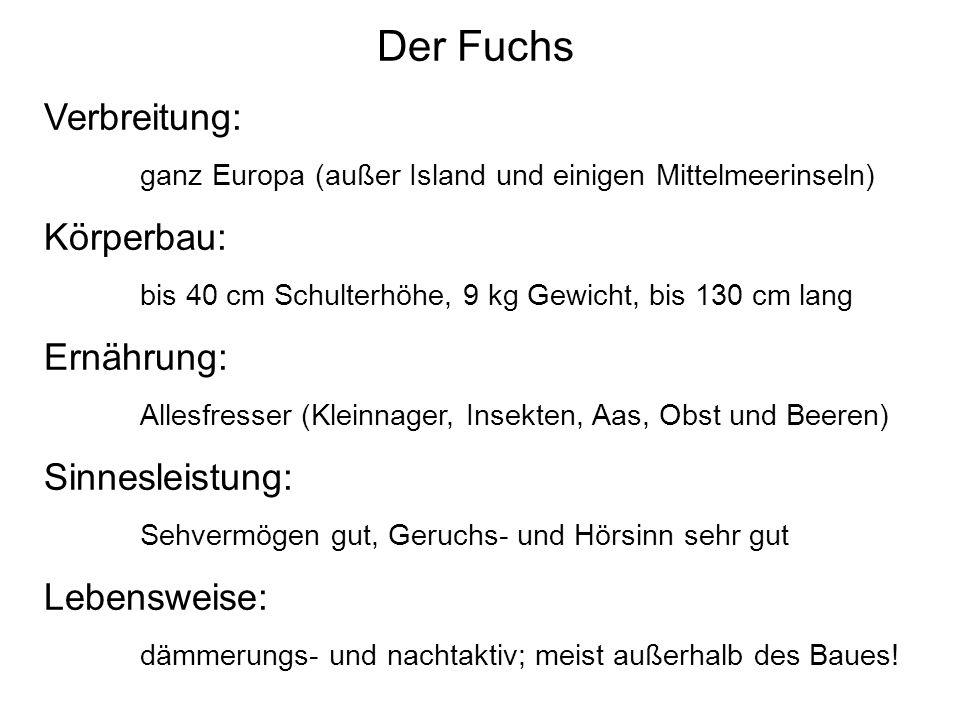 Der Fuchs Verbreitung: ganz Europa (außer Island und einigen Mittelmeerinseln) Körperbau: bis 40 cm Schulterhöhe, 9 kg Gewicht, bis 130 cm lang Ernähr