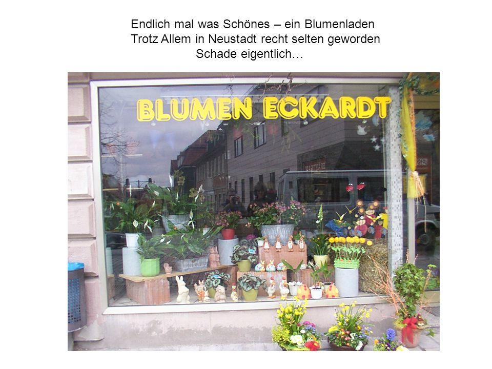Endlich mal was Schönes – ein Blumenladen Trotz Allem in Neustadt recht selten geworden Schade eigentlich…
