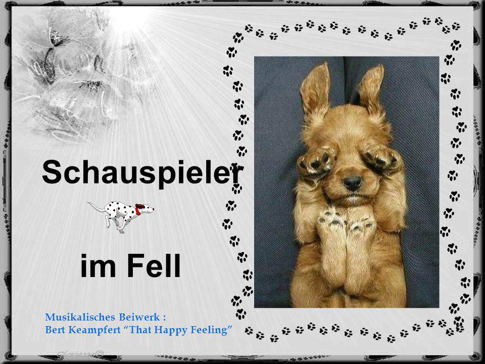 im Fell Schauspieler Musikalisches Beiwerk : Bert Keampfert That Happy Feeling