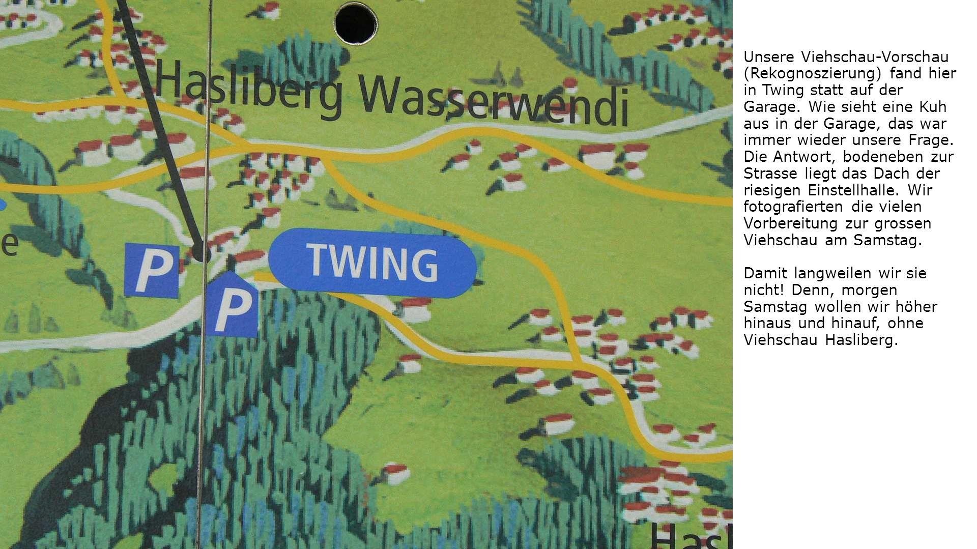 Unsere Viehschau-Vorschau (Rekognoszierung) fand hier in Twing statt auf der Garage.