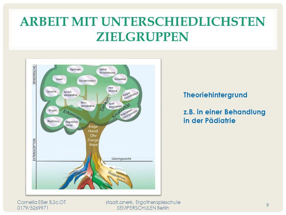 ARBEIT MIT UNTERSCHIEDLICHSTEN ZIELGRUPPEN Cornelia Eßer B.Sc.OT 0179/5269971 staatl.anerk.