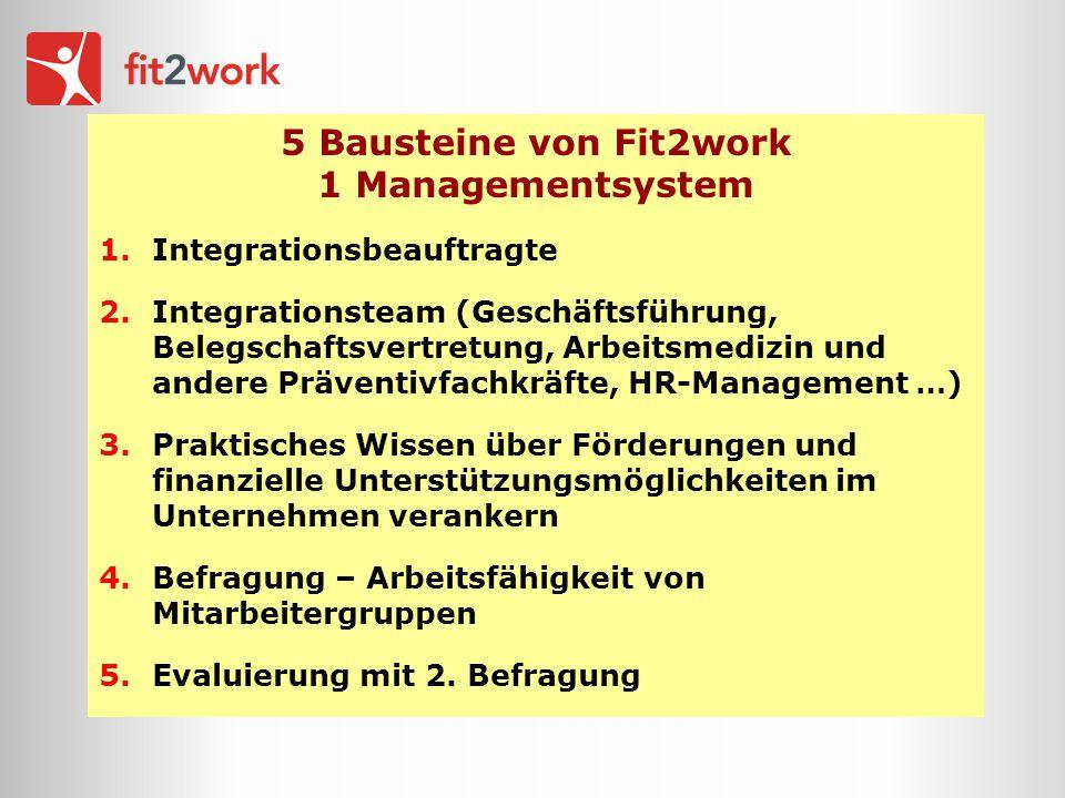 5 Bausteine von Fit2work 1 Managementsystem 1.Integrationsbeauftragte 2.Integrationsteam (Geschäftsführung, Belegschaftsvertretung, Arbeitsmedizin und