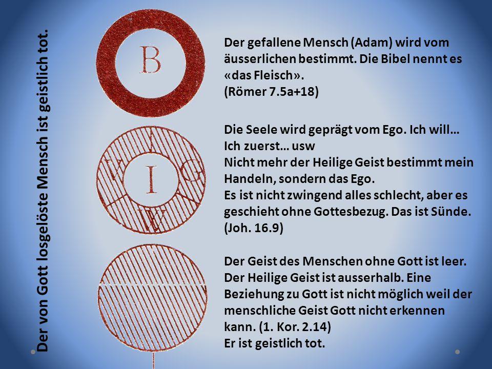 Der gefallene Mensch (Adam) wird vom äusserlichen bestimmt. Die Bibel nennt es «das Fleisch». (Römer 7.5a+18) Die Seele wird geprägt vom Ego. Ich will