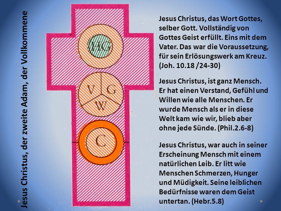 Jesus Christus, der zweite Adam, der Vollkommene Jesus Christus, das Wort Gottes, selber Gott. Vollständig von Gottes Geist erfüllt. Eins mit dem Vate