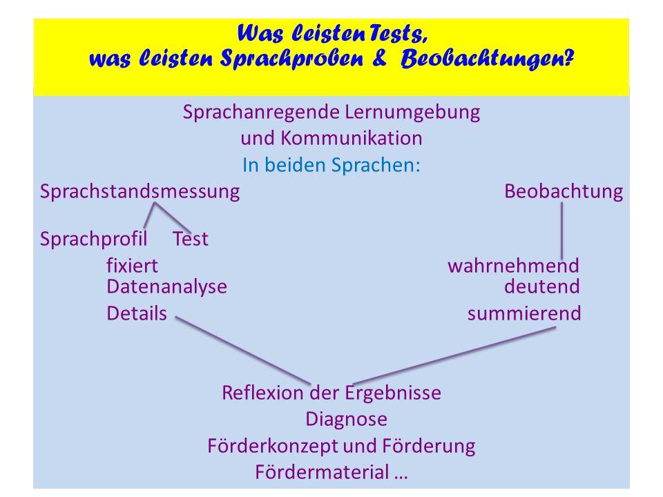 Sprachanregende Lernumgebung und Kommunikation In beiden Sprachen: Sprachstandsmessung Beobachtung SprachprofilTest fixiert wahrnehmend Datenanalysede