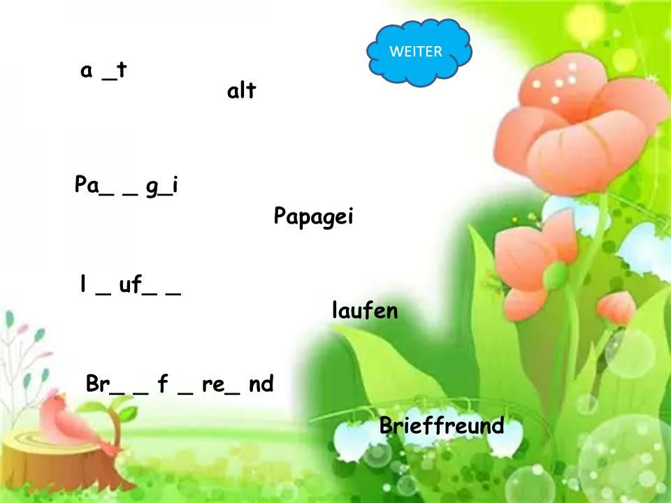 a _t alt Pa_ _ g_i Papagei l _ uf_ _ laufen Br_ _ f _ re_ nd Brieffreund WEITER