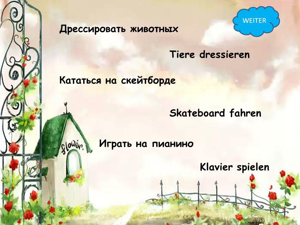 Дрессировать животных Tiere dressieren Кататься на скейтборде Skateboard fahren Играть на пианино Klavier spielen WEITER