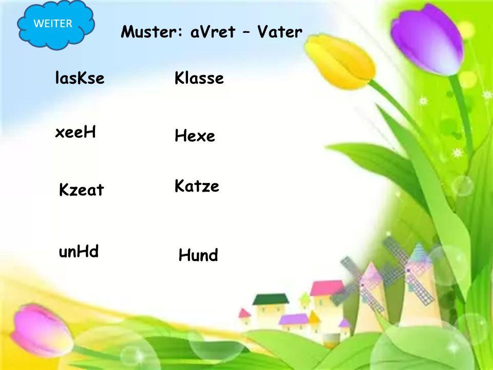lasKseKlasse xeeH Hexe Kzeat Katze Muster: aVret – Vater unHd Hund WEITER
