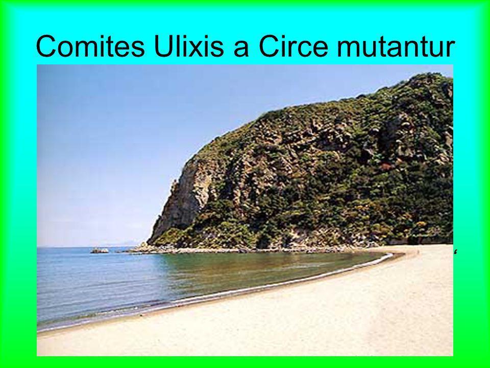 """Comites Ulixis a Circe mutantur Ulixes in insulam Aenaria venit, quae """"Iscia"""" appellatur. Ibi Circe, Solis filia, habitabat. Quae homines potione in b"""