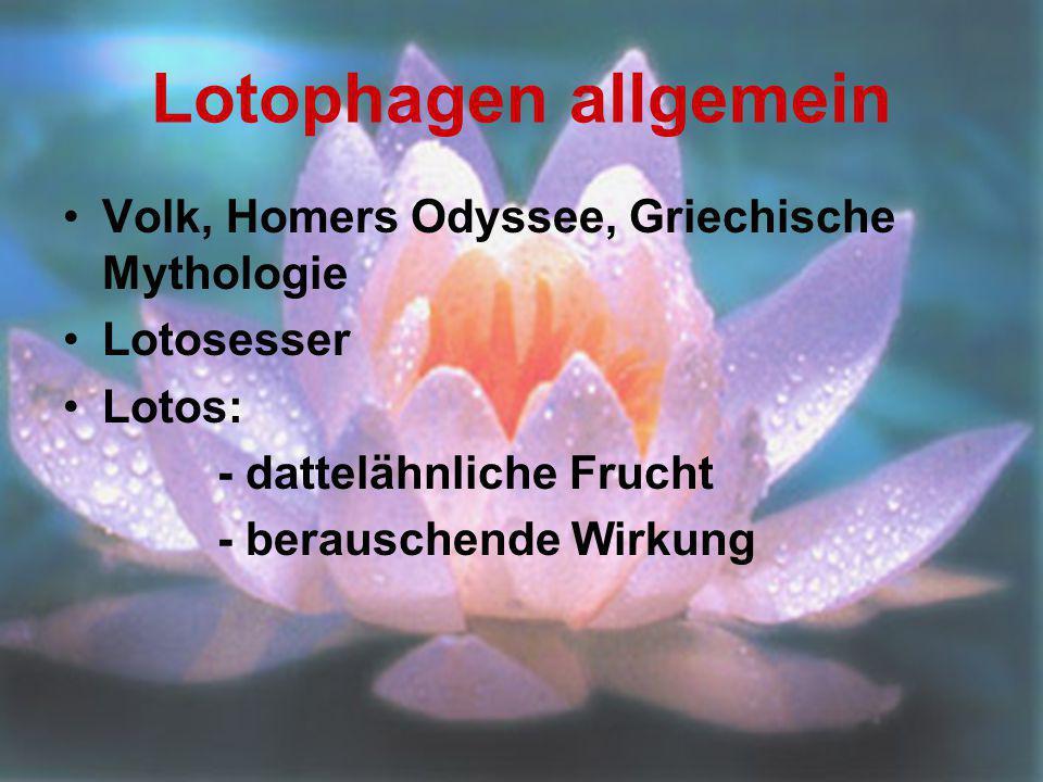 Lotophagen allgemein Volk, Homers Odyssee, Griechische Mythologie Lotosesser Lotos: - dattelähnliche Frucht - berauschende Wirkung