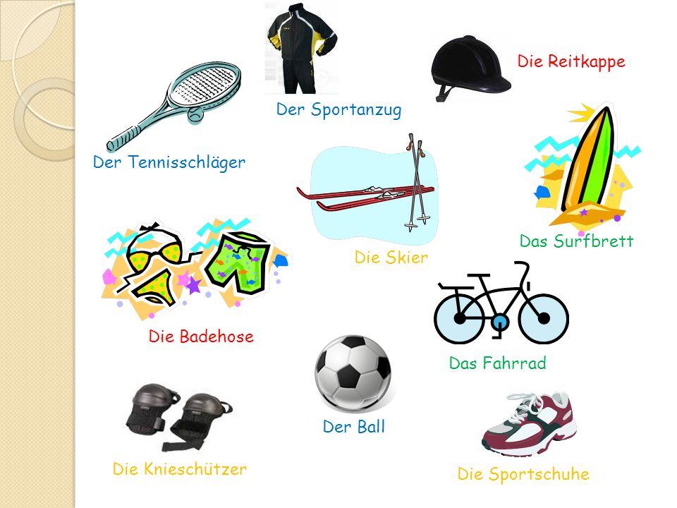 Der Tennisschläger Das Fahrrad Die Skier Die Badehose Der Ball Die Knieschützer Die Sportschuhe Das Surfbrett Die Reitkappe Der Sportanzug
