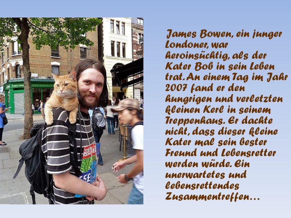 Die sehr schöne Geschichte einer Katze und ihres Herrchens, die sich gegenseitig das Leben gerettet haben, wird demnächst auch verfilmt, nachdem das Buch jetzt erschienen ist mit dem englischen Titel « A Street Cat Named Bob » deutsch « Bob der Streuner » von James Bowen